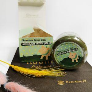 Skoncentrowana kolagenowa maseczka do twarzy Elizavecca Green Piggy Collagen Jella Pack 1
